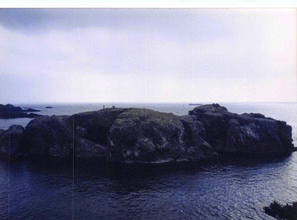 ウミネコの繁殖地「経島」