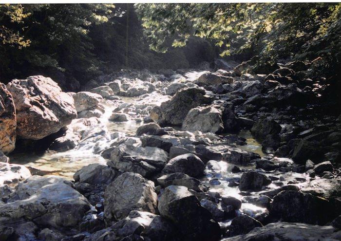 シオカラ吊り橋の渓谷