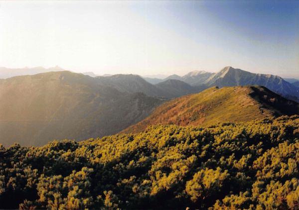 大滝山の山頂
