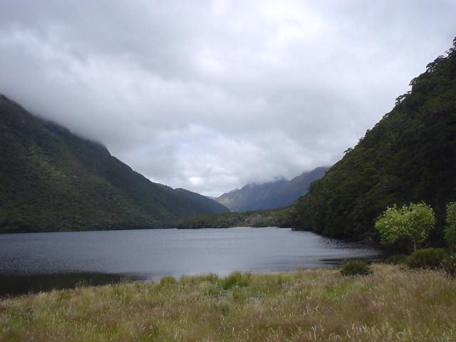 グリーンストーン・トラック - NZトレッキング