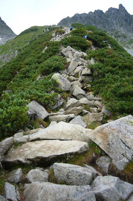 岩をよじ登る感じ