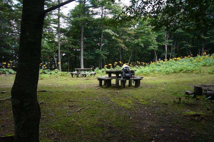 鷹ノ巣山非難小屋の広場