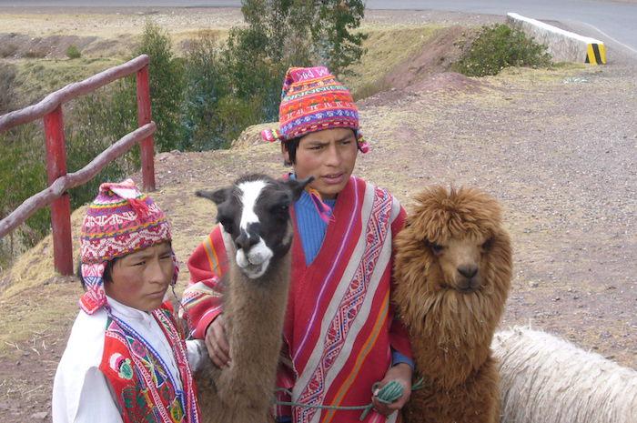 インカ民族衣装とリャマ、アルパカ