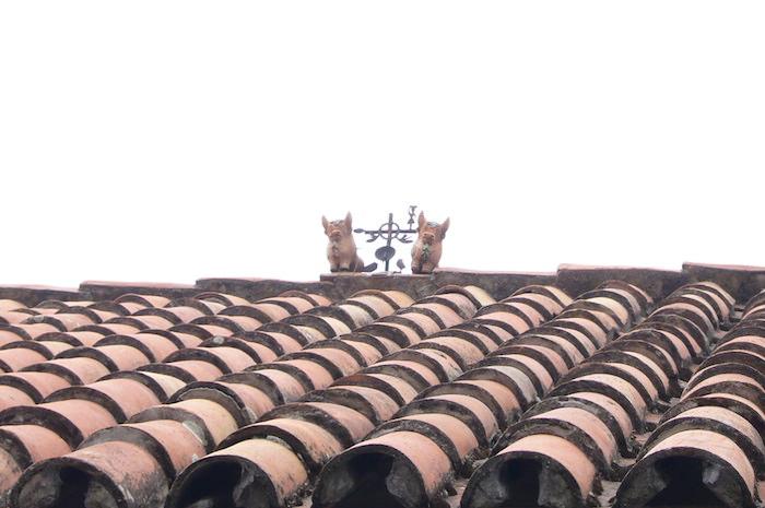 民家の屋根に何か飾られている