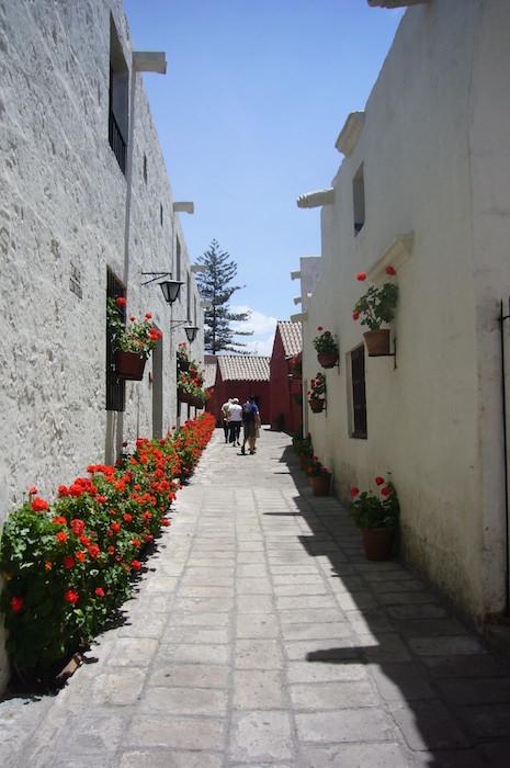 花で彩られた通路