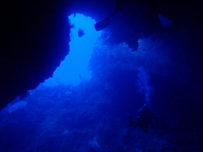 シアス・トンネル - パラオダイビング