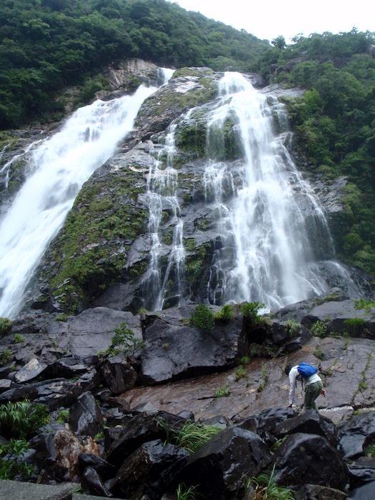 大川の滝 - 屋久島
