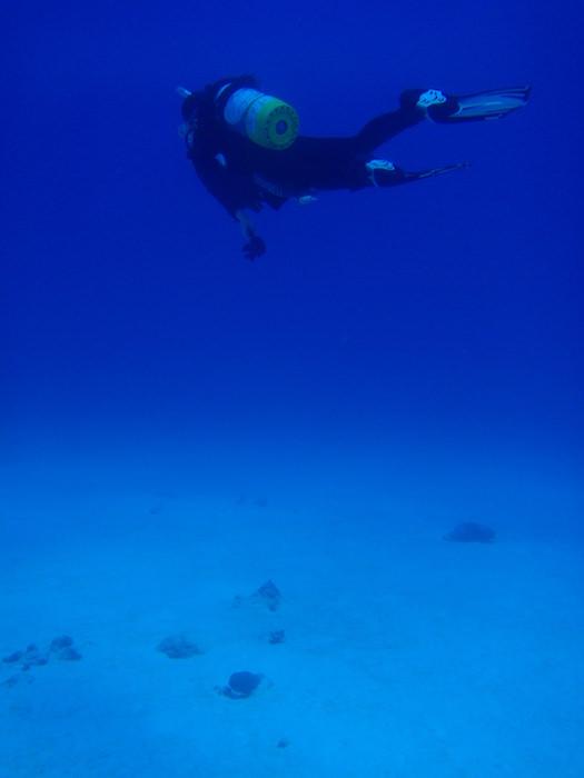 白い砂@波照間島ダイビング