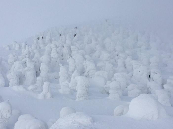 山形蔵王温泉スキー場 山頂ハイク