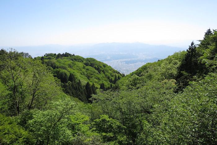 大和葛城山登山の途中