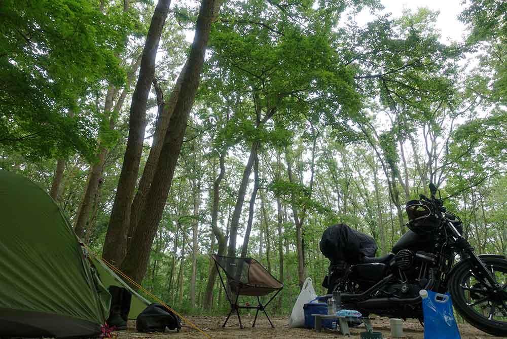 奥琵琶湖キャンプ場でバイクキャンプ
