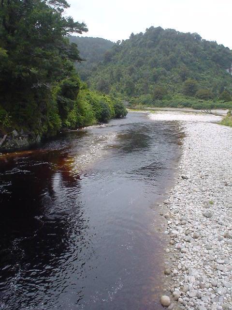 ヒーフィ川 - ヒーフィー・トラック - NZトレッキング