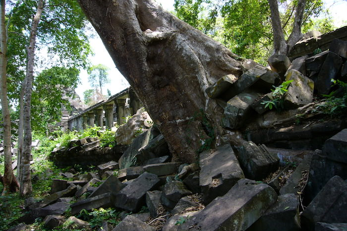 巨木による遺跡崩壊 - ベンメリア遺跡