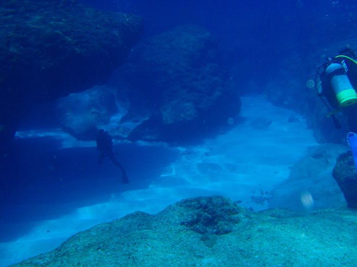 与那国島ダイビング ホワイトワールド