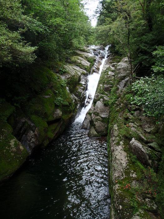白妙の滝- 白谷雲水峡トレッキング