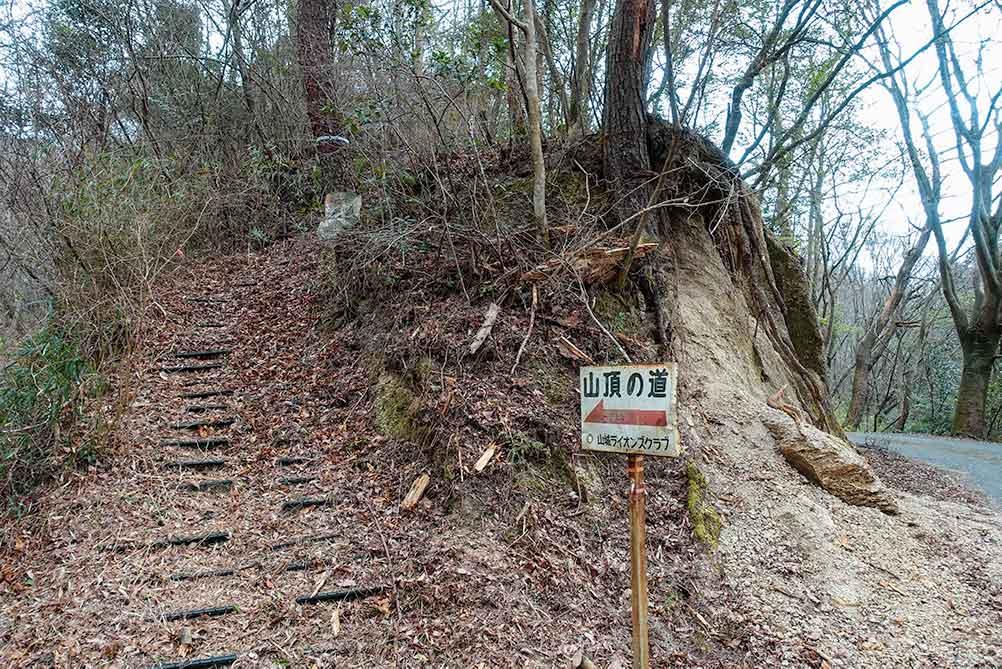 三上山 山頂の道コース