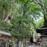 本山寺からポンポン山への往復トレッキング