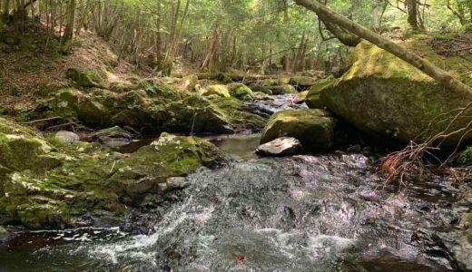 るり渓から深山への往復トレッキング