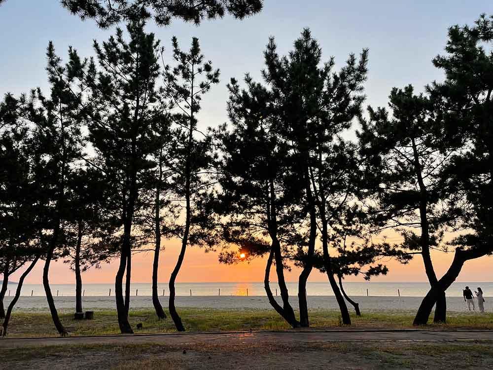 ホテルから見る、慶野松原の夕日
